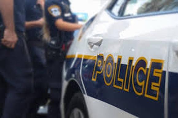 Полиция и политика