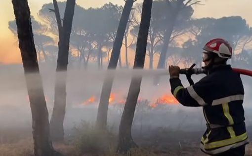 Теперь и Францию охватили пожары: есть погибшие
