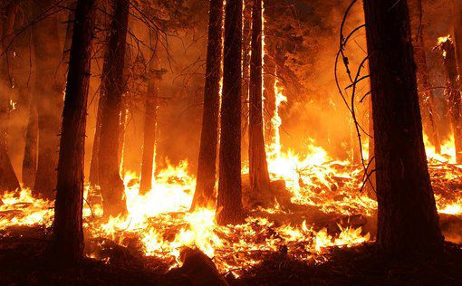 Сильный лесной пожар в Калифорнии влияет на погоду