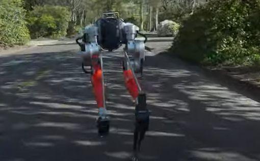 Двуногий робот пробежал 5 км за 53 минуты